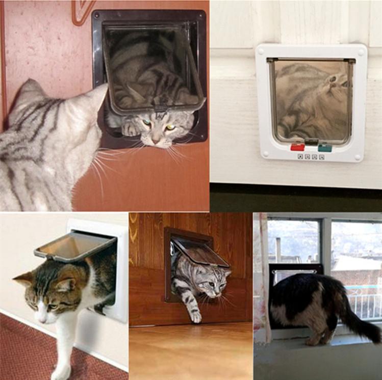 Pet Door (2)