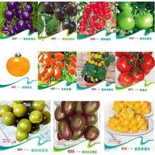 1100pcs 11kinds Tomato seeds different color flavors Fruit Vegetable Bonsai Zebra TOMATO SEEDS Purple Cherokee Cherry Black Blue