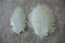 Free Shipping-50 pcs 5-8inch(12-20cm) white Ostrich Feather for wedding decor party table decor event supplies(China)