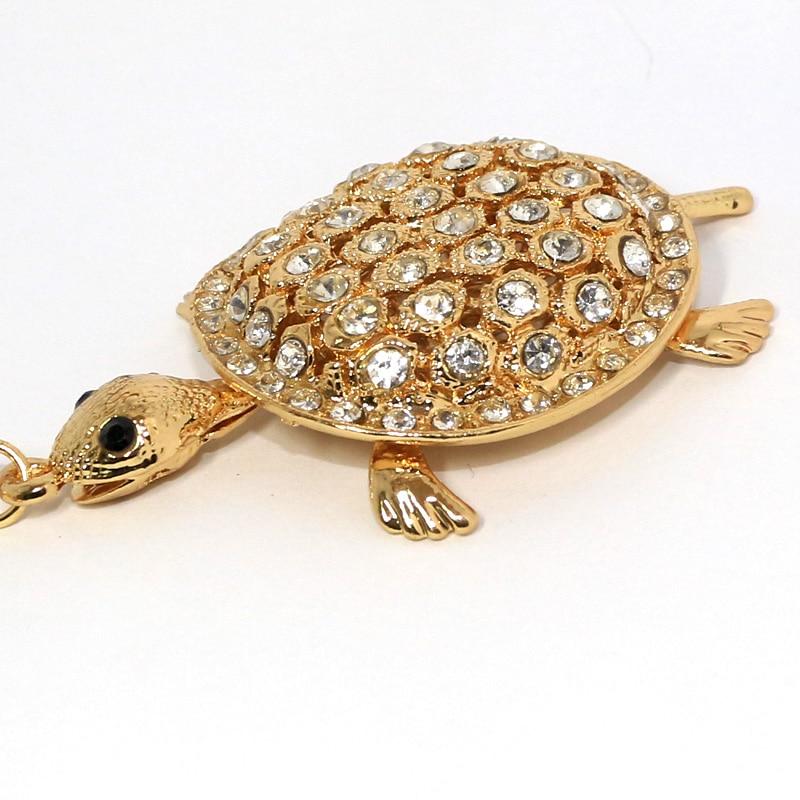 JN-tortoise-2