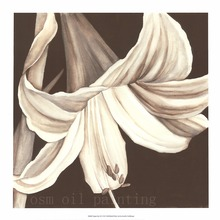 Spray Painting Modern Abstract Wall Artwork Flower White Daffodil Canvas Printings Living Room Decorative Prints Oil Pictures(China)