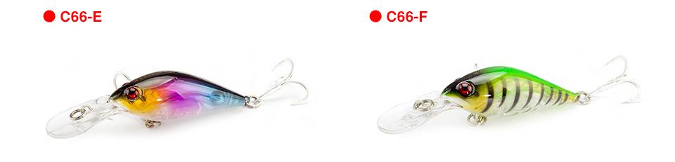 C66_09