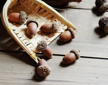 10 pcs real dry Acorn/Brown/Mini Craft supplies/home fairy garden Decor/DIY Accessories/props