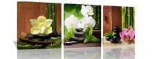 3 Panels Modern Giclee Prints Artwork Zen Basalt Stones Flowers Bamboo Pictures Paintings on Canvas Wall Art for Home Wall Decor