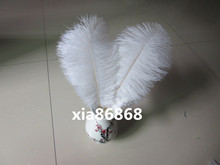 Free shipping 10pcs/lot multicolor 20-25cm/8-10Inch white ostrich feathers plumage cheap bulk feathers for wedding(China)