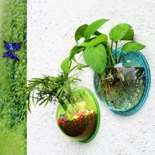 Home Decoration Pot Plant Wall Mounted Hanging Bubble Fish Bowl Transparent Acrylic Bowl Fish Tank Aquarium