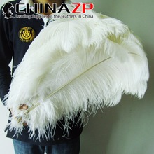 CHINAZP Factory Large Size 55-60cm(22-24inch) 50pcs/lot Top Quality Wholesale White Ostrich Feathers Bulk(China)