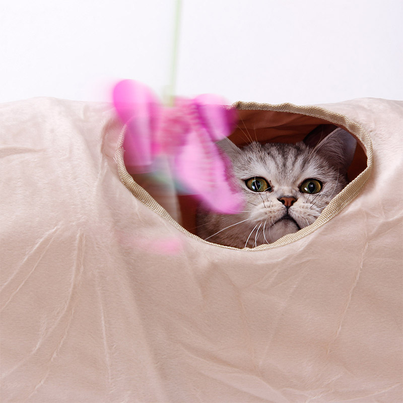 luxury cat tunnel Luxury Cat Tunnel-Suede Material,Soft And Durable-Free Shipping HTB16L73esnI8KJjSspeq6AwIpXaL