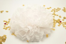 10PCS 10 inches white Paper Pom Poms flower Balls wedding party decoration centerpieces supplies baptism christening