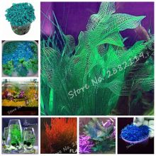 New Arrivals! 300 Pcs/bag Hot Sale Aquarium Plant Seeds Fish Tank Dedicated Water Grass Seed Natural Growth Indoor Beautifying(China)