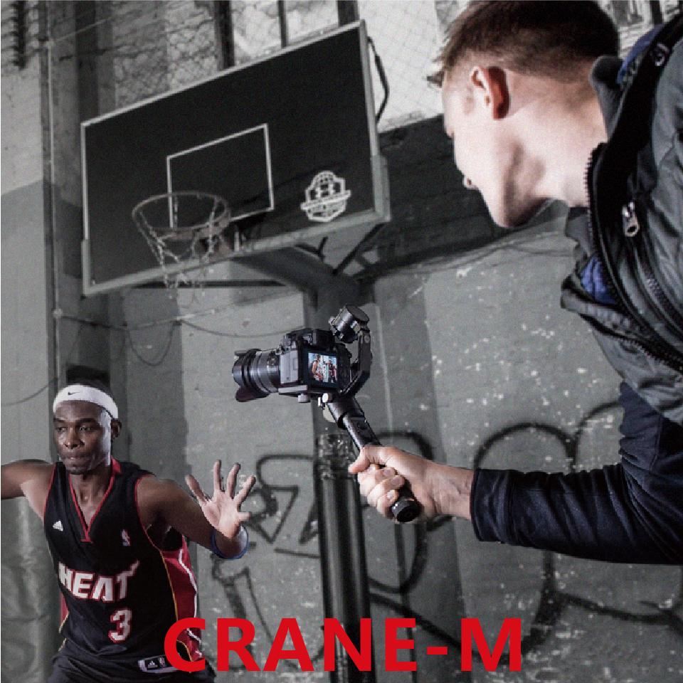-Crane-M_01