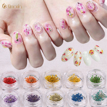 1 Box 10 Colors Real Dried Dry 3D Flower Nail Art DIY Decorations Small Preserved Flower Nails Rhinestones Manicure Tools Beauty