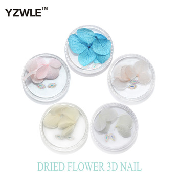 YZWLE 3Pcs flowers&2Pcs drills/Box Colorful Dried Flower 3D Nail Decoration Preserved Flower Manicure Nail Art Decoration#YZW-(G