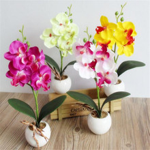 New Flower Four Butterfly Orchid Meaty Plant Bonsai Creative Flower Arranging Accessories Free Shipping Wholesale
