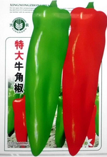Heirloom Long Giant Ox Horn Sweet Pepper Organic Seeds, Original Pack, 100 Seeds / Pack, Green Red Vegetables E3106(China)