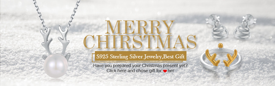 ZY-2017CHRISTMAS-BANNER small