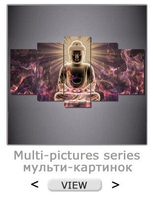 multi-pictures