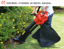 Outdoor Garden Leaf Blower & Vacuum - Powerful 2800 Watt with 10m cable(China)