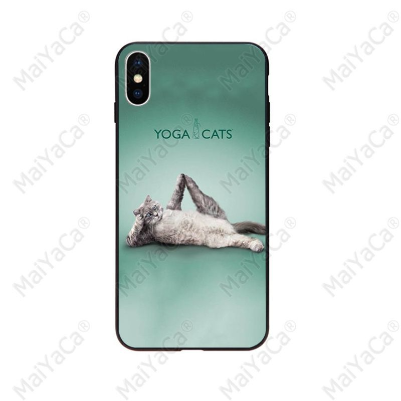 Yoga Cats dogs