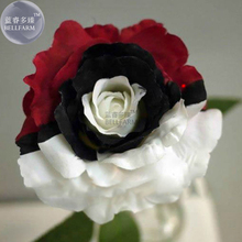 BELLFARM Heirloom Rare White Black Red Tri-color Rose with white eye, 50 Seeds, attract the butterfly add interest E3603