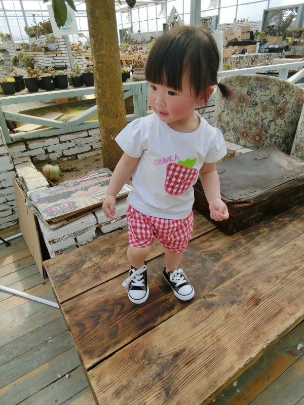 Baby girl clothes summer kids clothes sets t-shirt+pants suit clothing set strawberry pattern tee &amp;plaid shorts Clothes<br><br>Aliexpress