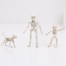 Pose Skeleton Human Man Child and Dog Jointed Posable Skeleton Body Chan Kun Youth Cartoon Toy Action Figure Model Doll