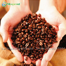 Bonsai Coffee Bean Seeds, Green food Seeds Coffee Tree seeds, 100% True Coffee Seeds, 20 particles / bag