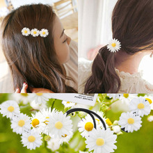 10pcs Hair Small Daisy Flower Ring Hairpin Sen Female Soft Sister Small Fresh Hairpin Headdress Hair Accessories For Women Hair(China)