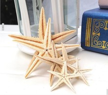 20pieces 6-9cm BIG Natural Starfish Wishing Sea Star Home Decoration Wall Stickers Adornment Organic Material DIY favors(China)