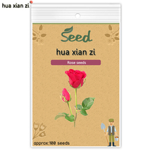HUA XIAN ZI Rose Seeds Red Rose Flower Seed DIY Home Garden Potted Balcony Yard Flowers Plant 100 seeds/bag