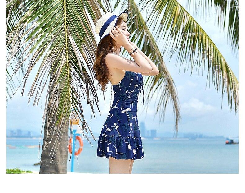 Yingfa Swimwear New Rushed Staerk 2017 Swimsuit Female Conjoined Conservative Belly Skirt Small Fresh Thin Sexy Student Bikini