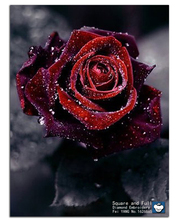 Canvas fabric flowers red roses pictures of the diamonds embroidery needlework diy diamond painting square drill home decoration