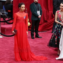 89th Annual Academy Awards Ruth Negga Lace Celebrity Dresses Long Sleeve Evening Dress Chiffon Red Carpet Dresses Elegant
