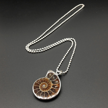 Natural Ammonite Conch Shell Pendant for DIY Jewelry Fingings Charm Handmade(China)