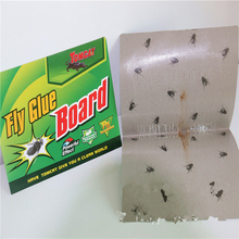 50pcs House Fly Catchers Fly Glue Paper Trap Strong Flies killer Moths Bed Bugs Sticky Board Ants Spiders Pests Insect Control(China)