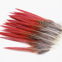 20pcs 4-5.5inch Beautiful pheasant feathers red sword rare feathers bulk feather fly fishing tying accessories material(China)
