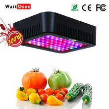 Double chips 300W led grow lights 16 kinds spectrum Flower indoor Lamp for plants Overseas warehours Fast deliver Veg Bloom(China)