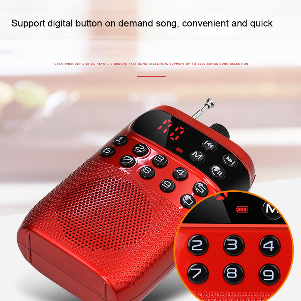 E2948-mini FM radio-6