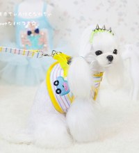 Kawaii Pet Shop Pet Leash and Harness Protection Set Dog Rope Necklace Dog Leading Pet Cat Colar Acessorios PN20123 Lead(China)