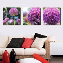 2017 Rushed 3 Panels Unframed Canvas Photo Prints Dandelion Wall Art Picture Paintings Decorations Artwork Giclee Home Decor(China)
