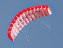 1.4m Power Dual Line Stunt Parafoil Parachute Soft Kite with Handle 30m Line Sports Beach Kite For Beginner(China)