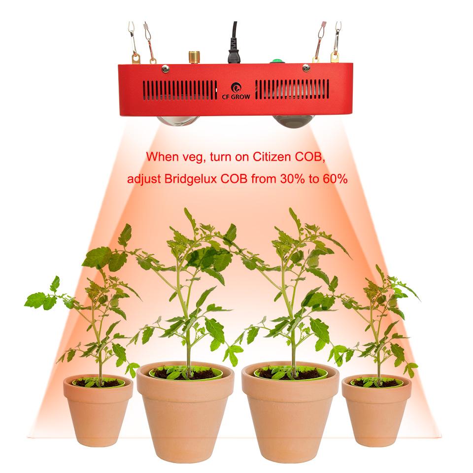 Citizen Bridgelux COB led grow ligth -10