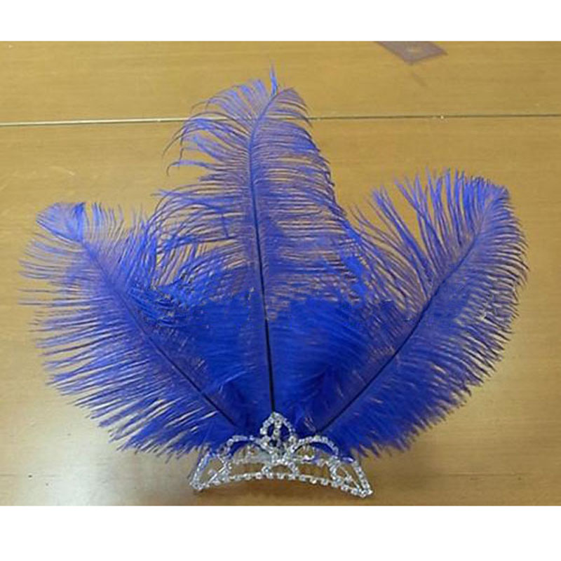 Custom Made Ballet Blue Feather Headwear With Crown Solo Dance,Blue Bird Crown Ornament Crystal Crown Free Shipping HDE022<br>