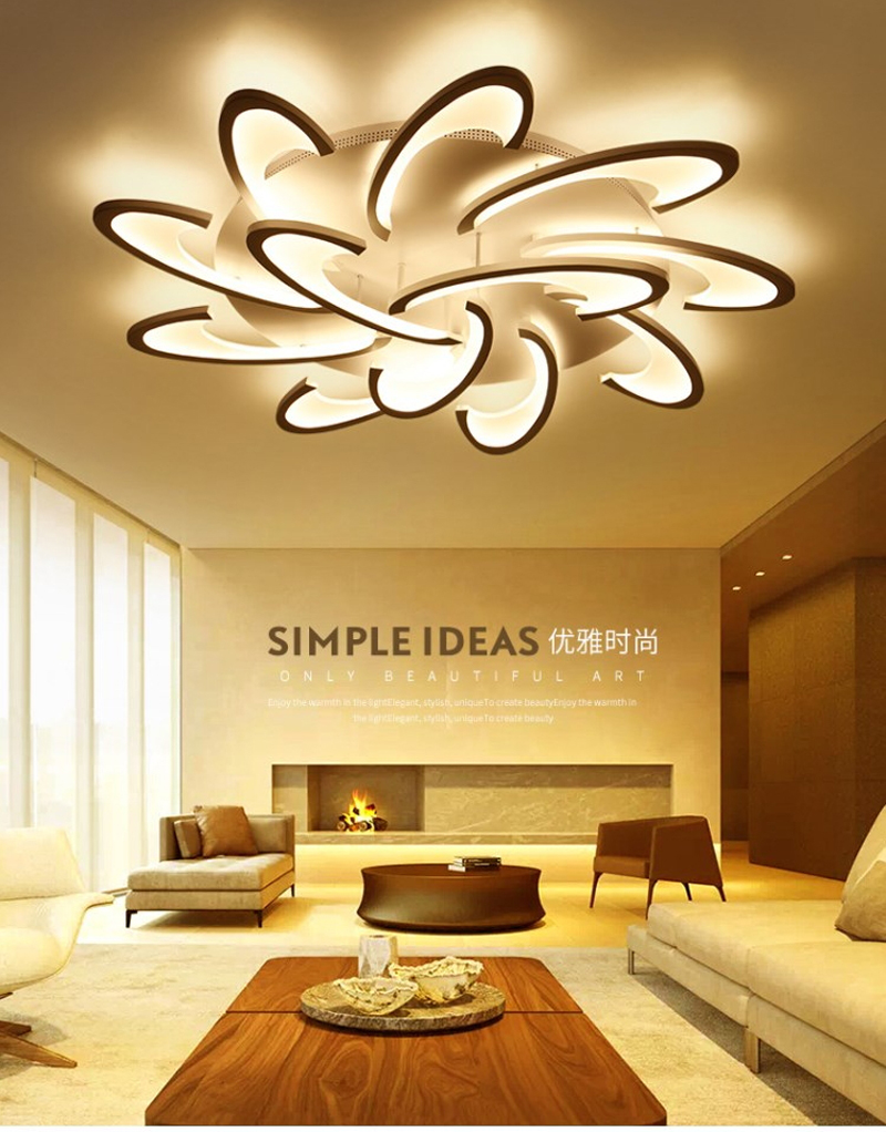 simple ceiling light (20)