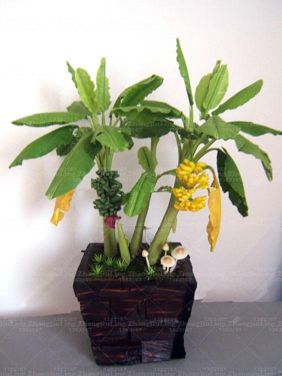 100pcs-bag-Potted-banana-seeds-bonsai-Organic-fruit-seeds-Healthy-and-nutritious-food-fruits-dwarf-banana(2)_