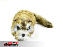Rocky Raccoon Magic trick, Robbie Magic Accessories,gimmick,classic toys,comedy,wholesale