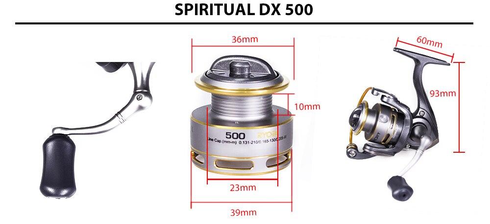 spiritual-DX-2_08