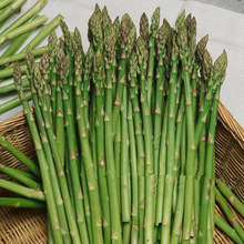 100 pcs asparagus seeds lower blood pressur,Vegetable and fruit seeds,Bonsai plants Seeds for home & garden Free shipping(China)