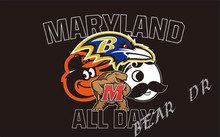 3X5FT ALL DAY Baltimore Ravens Baltimore Orioles Maryland Terrapin Natty Boh flag Maryland team banner custom flag(China)