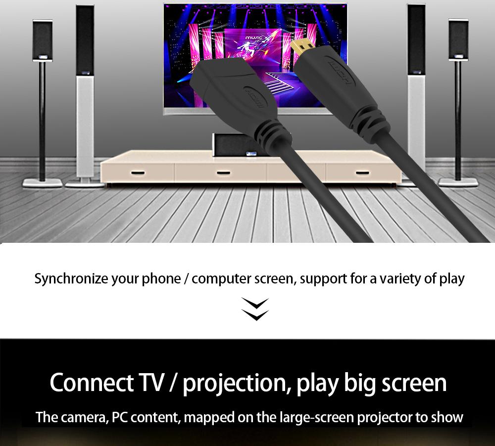 HDMI D tüübi kaabli adapter